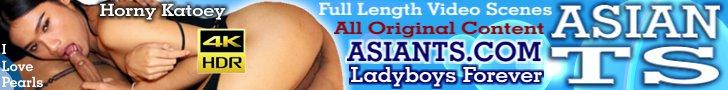 Huge Treasure of Sexy Asian Transsexuals!!